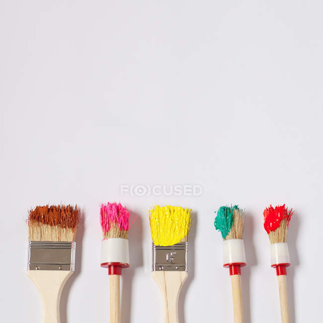 Colorful paint brushes isolated on white background — Stock Photo