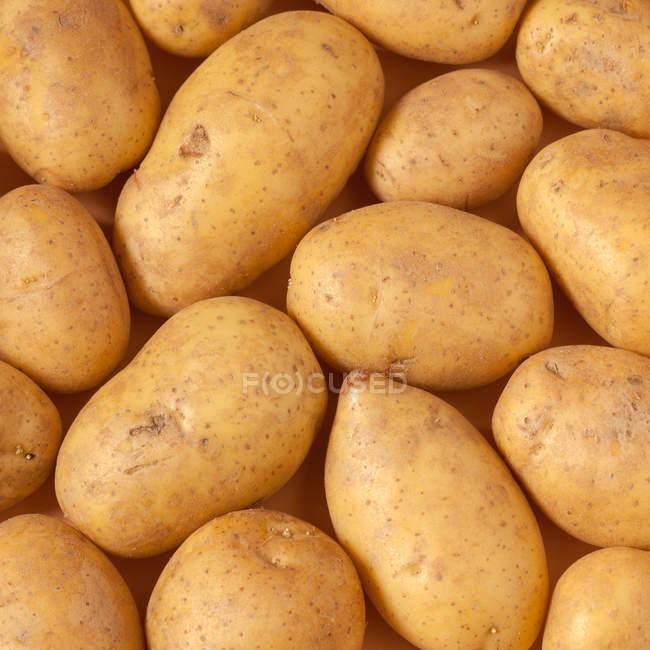 Frische saubere Kartoffeln — Stockfoto