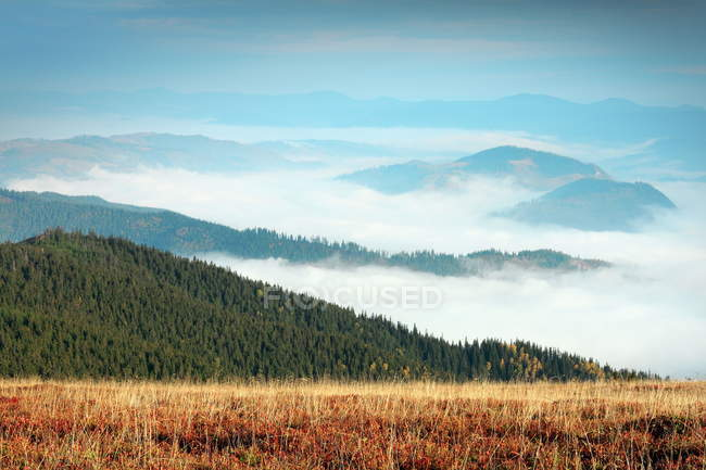 Nebeliger Morgen in Giumalau Bergen — Stockfoto