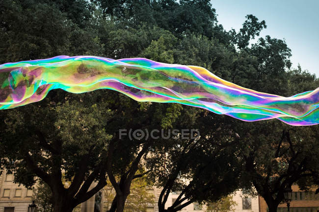 Colorful soap bubbles by the green trees — Stock Photo