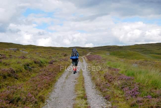 Viajante com mochila andando no caminho no campo — Fotografia de Stock