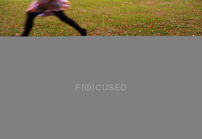 Autumn tree leaves on field and running person — стоковое фото