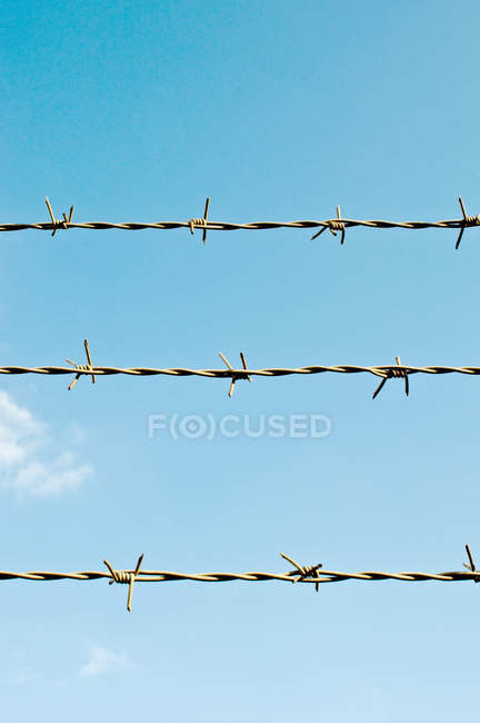 Close-up view of barbed wire — Stock Photo