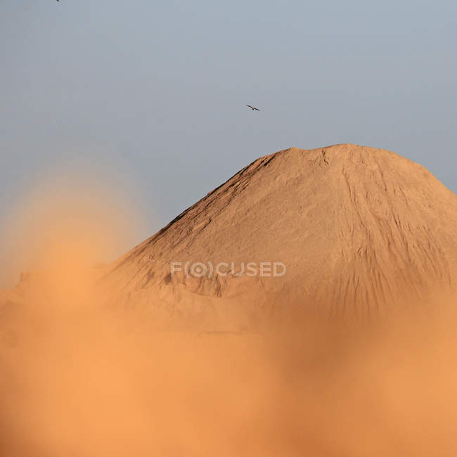 Durante o dia distante vista de pássaro voando sobre dunas de areia — Fotografia de Stock