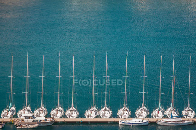 Row of white luxury yachts in harbor, elevated view — Stock Photo