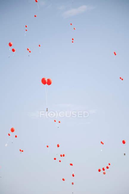 Reihe von Ballons in die Luft fliegen — Stockfoto