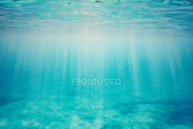 Unterwasser-Szene mit Sonne am Meeresboden — Stockfoto