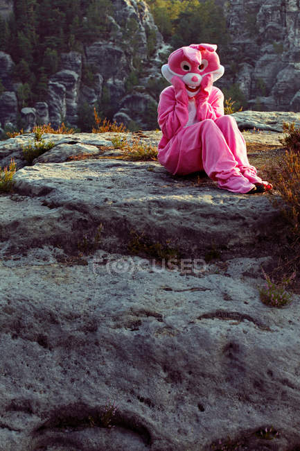 Bunny sitting on the rock — Stock Photo