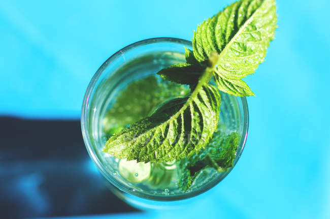 Mint leaves in glass of water — Stock Photo