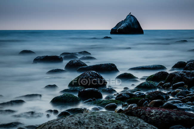 Seascape with seagull sitting on rock — Stock Photo