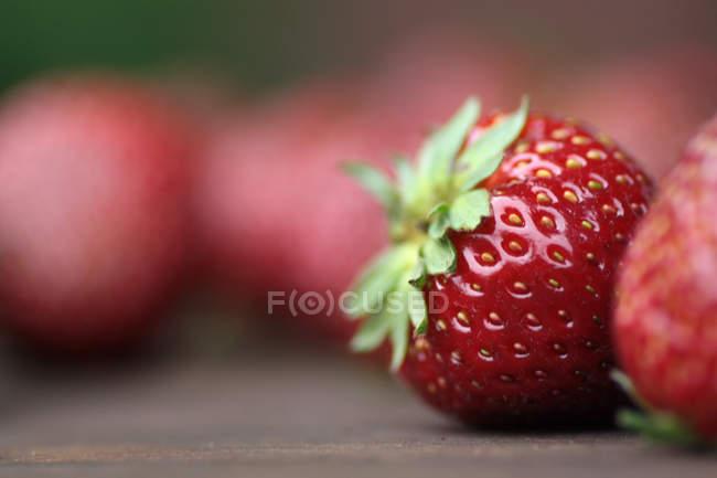 Fresh picked ripe strawberry — Stock Photo
