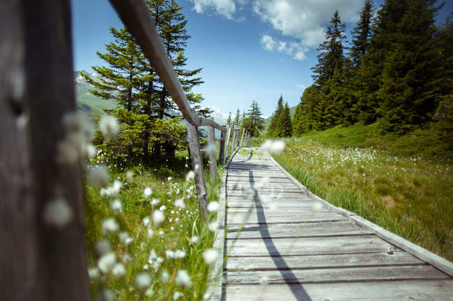 Leere Fußgängerbrücke mit Landschaft am Horizont — Stockfoto