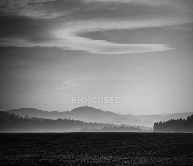 Foggy morning landscape with agricultural field — Stock Photo