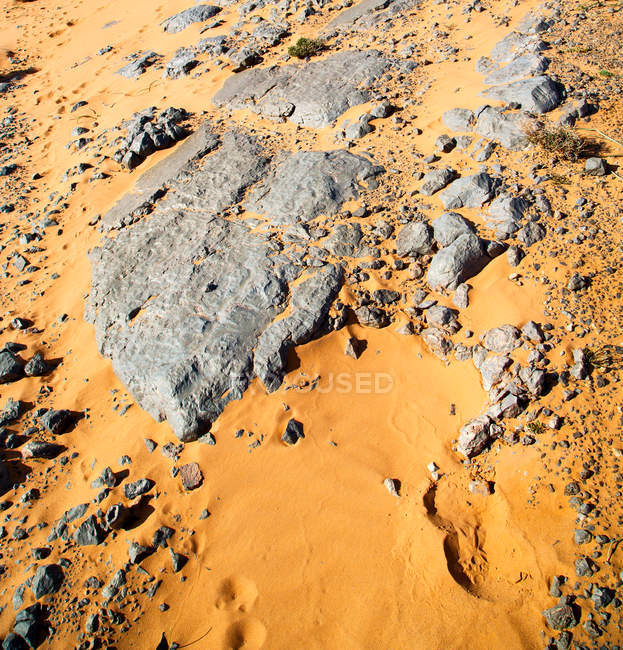 Rocks and stones on yellow sand in desert — Stock Photo
