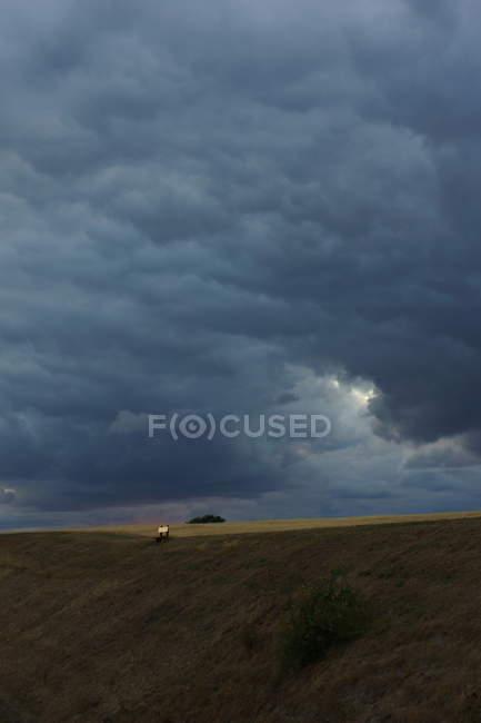 Stormy skyline with field — Stockfoto