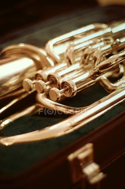 Золотой музыкальный джаз Туба — стоковое фото