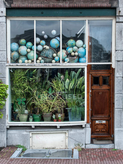 Shop-window with heap of globes and leafy potted plants — Stock Photo