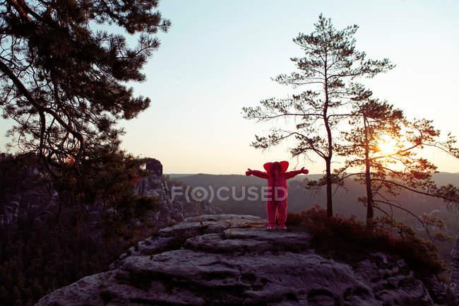 Pink elephant dans nature — Photo de stock