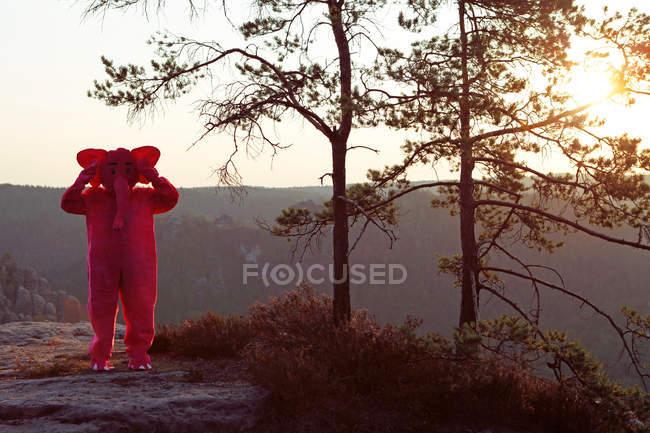 Elefante rosa nel selvaggio — Foto stock