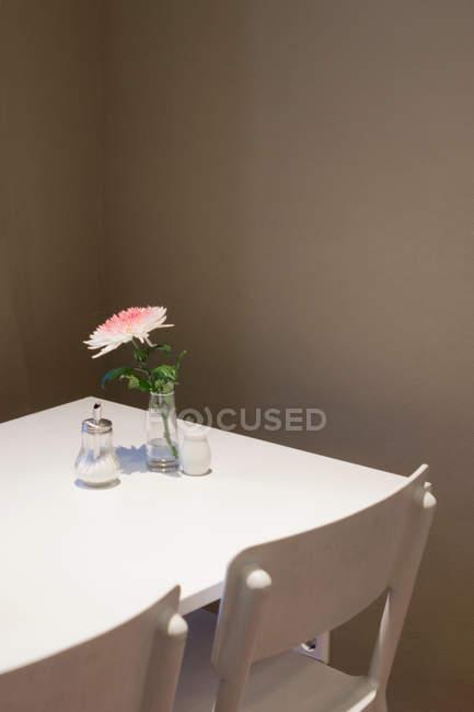 Cadeiras vazias por mesa branca com gerbera no vaso e saleiro — Fotografia de Stock