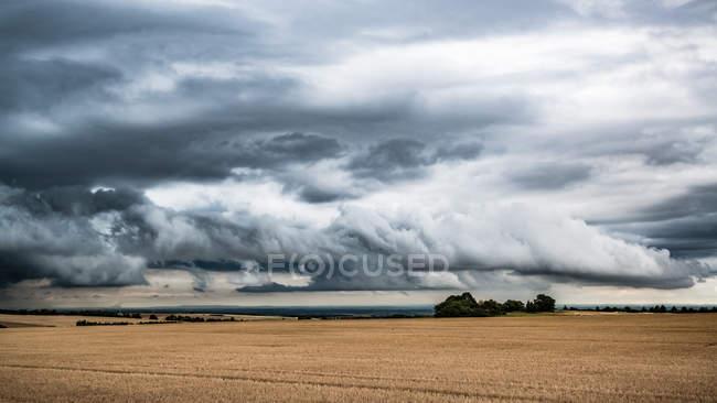 Landwirtschaftlichen Bereich unter stimmungsvoller Himmel — Stockfoto