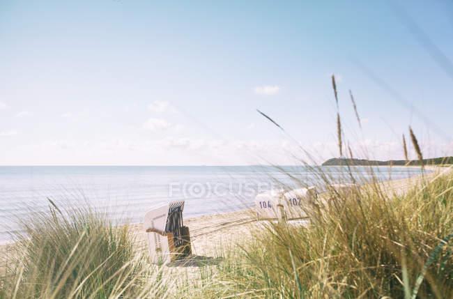Strandkörbe am Sandstrand, Kräuter im Vordergrund — Stockfoto
