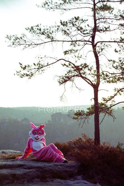 Кролик, сидящий на скале — стоковое фото