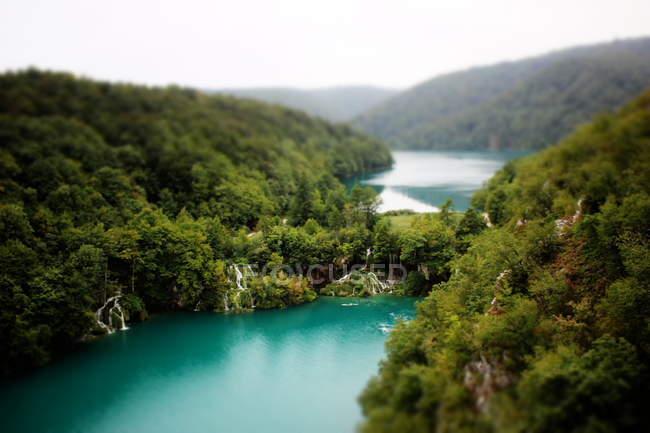 Waldlandschaft mit Fluss — Stockfoto