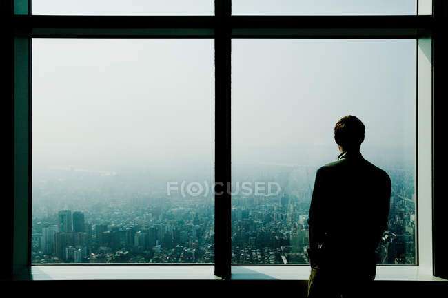 Rear view of businessman standing at window and looking at city — Stock Photo