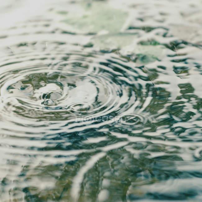 Pluie d'automne, flaque d'eau avec des gouttelettes — Photo de stock