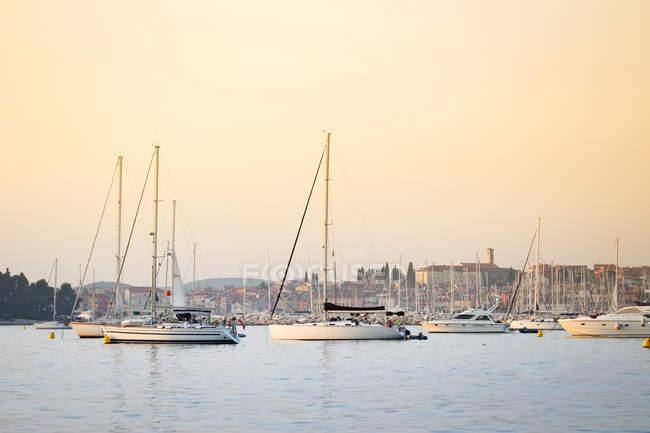 Bateaux à voiles ancrés dans le port d'à la ville côtière Adriatique, vue coucher du soleil, Rovinj, Croatie — Photo de stock