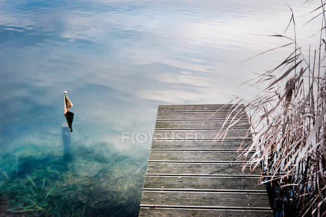Passerella di legno sul lago con filo d'erba di ance — Foto stock