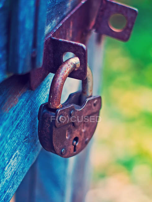 Locked rusty padlock hanging on wooden door — Stock Photo