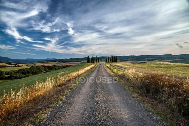Landschaft mit Zypressen — Stockfoto