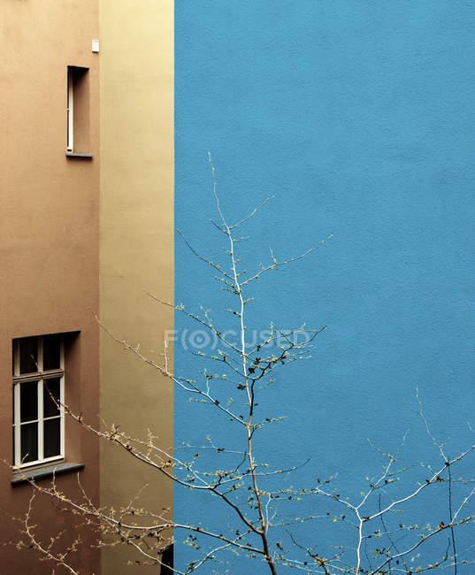 Жилой дом в жилом районе города и голые дерево — стоковое фото