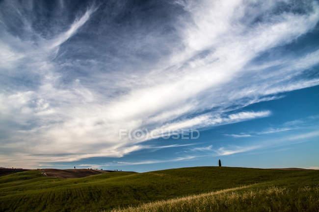 Campi agricoli sulle colline — Foto stock