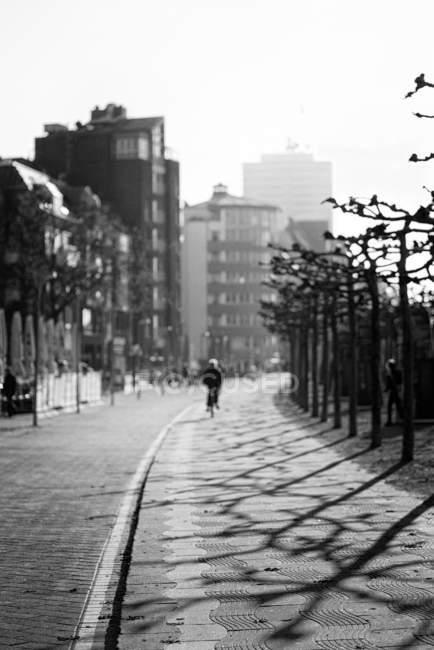 Vista de bicicleta na rua na cidade — Fotografia de Stock