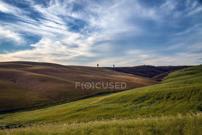 Landwirtschaftliche Flächen auf Hügeln — Stockfoto