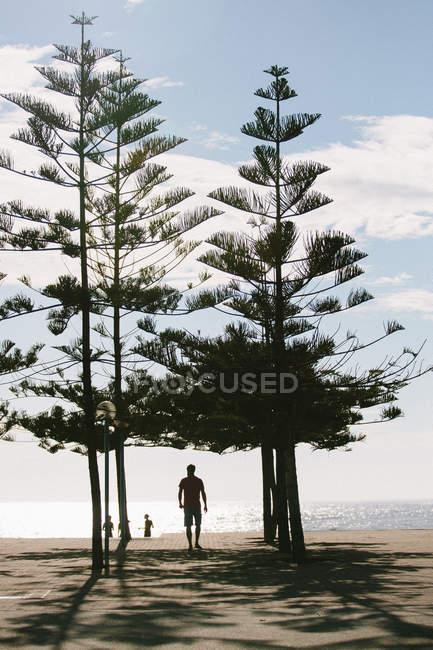 Homem de pé sob as árvores na margem do Rio — Fotografia de Stock