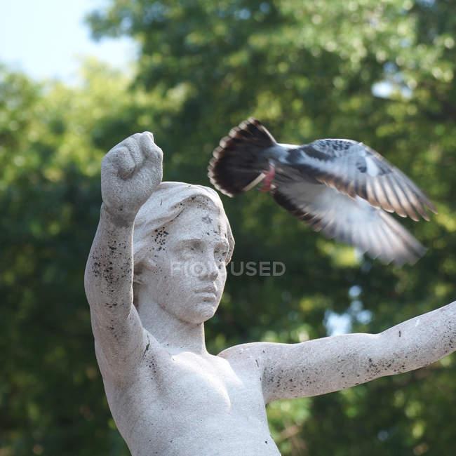 Статуї з підняли руки і літати голуб — стокове фото
