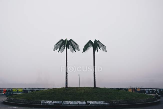 Crescente verde palmeiras na estrada — Fotografia de Stock
