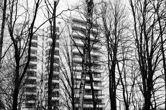 Residential houses and bare trees on foreground — Stock Photo