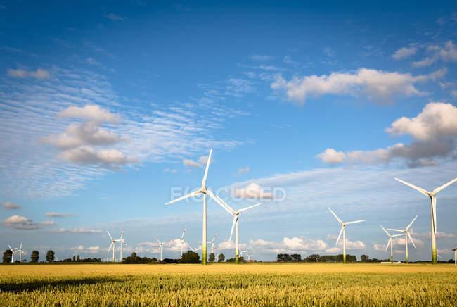 Windmühlen, die Erzeugung von Energie im Bereich — Stockfoto
