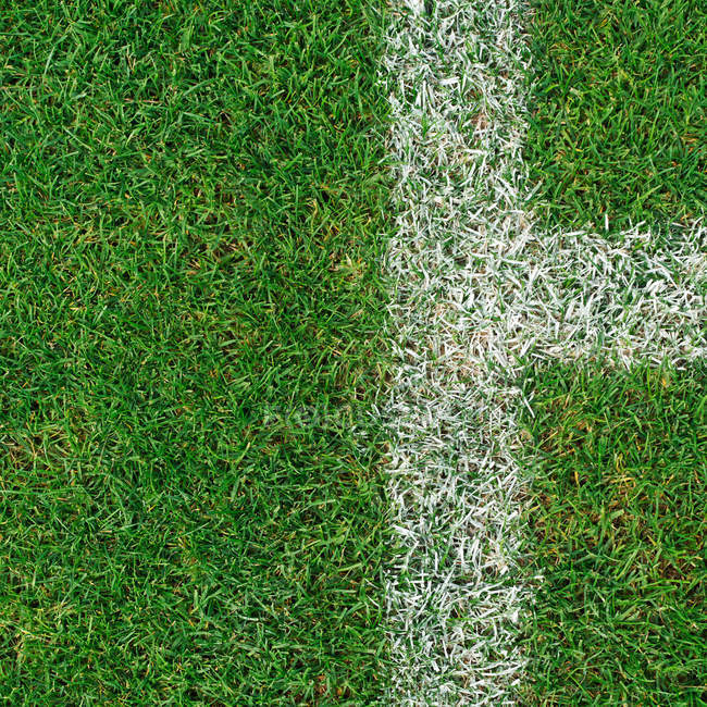 Football field, white lines on green grass, top view — Stock Photo