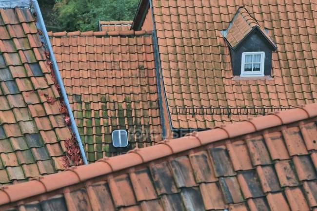 Gekachelte Dächer von oben mit Fenstern in den Dachböden — Stockfoto