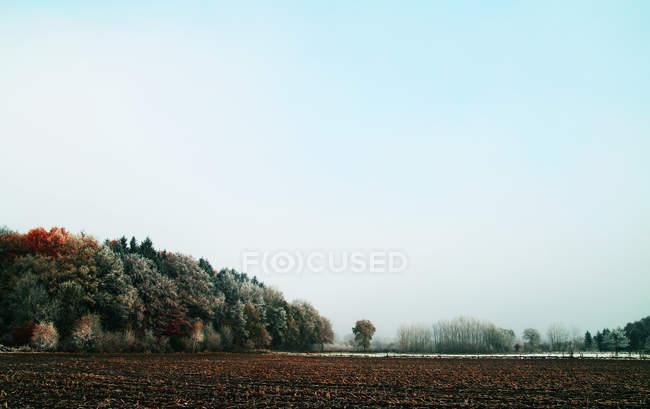 Поздней осенью пейзаж — стоковое фото