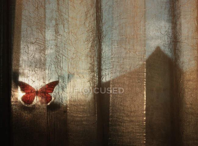 Gran mariposa en la cortina de la ventana - foto de stock