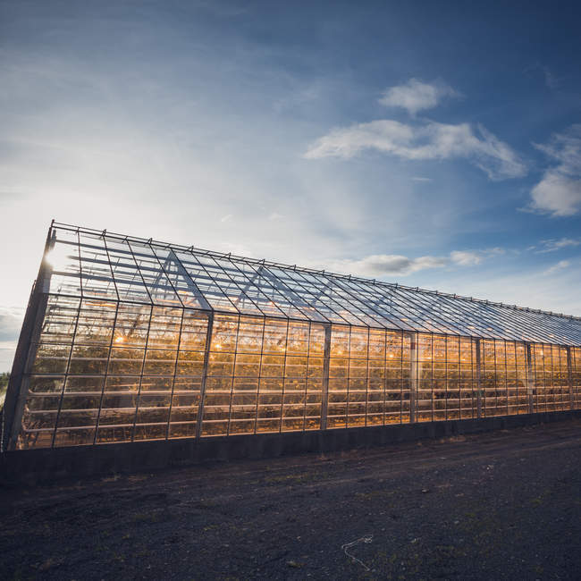 Glasshouse in agricultural field for growing plants — Stock Photo