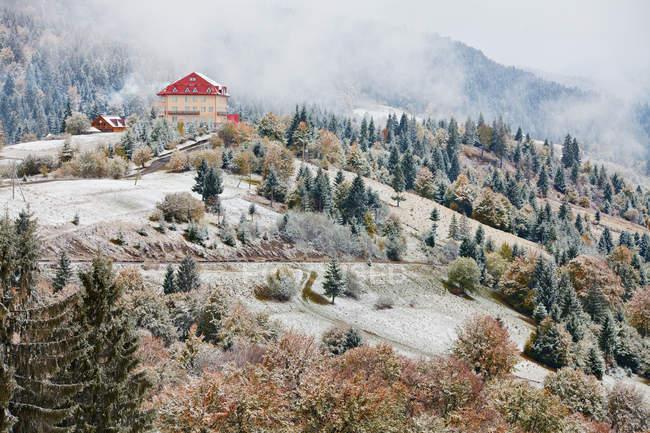 Primera nieve en otoño - foto de stock