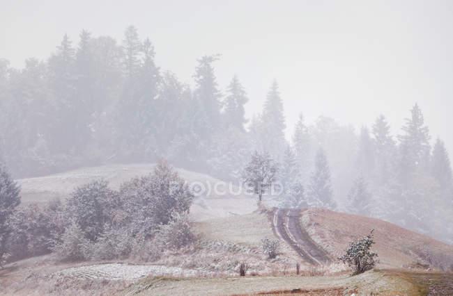 Primera nieve en otoño. Nevadas en las montañas - foto de stock